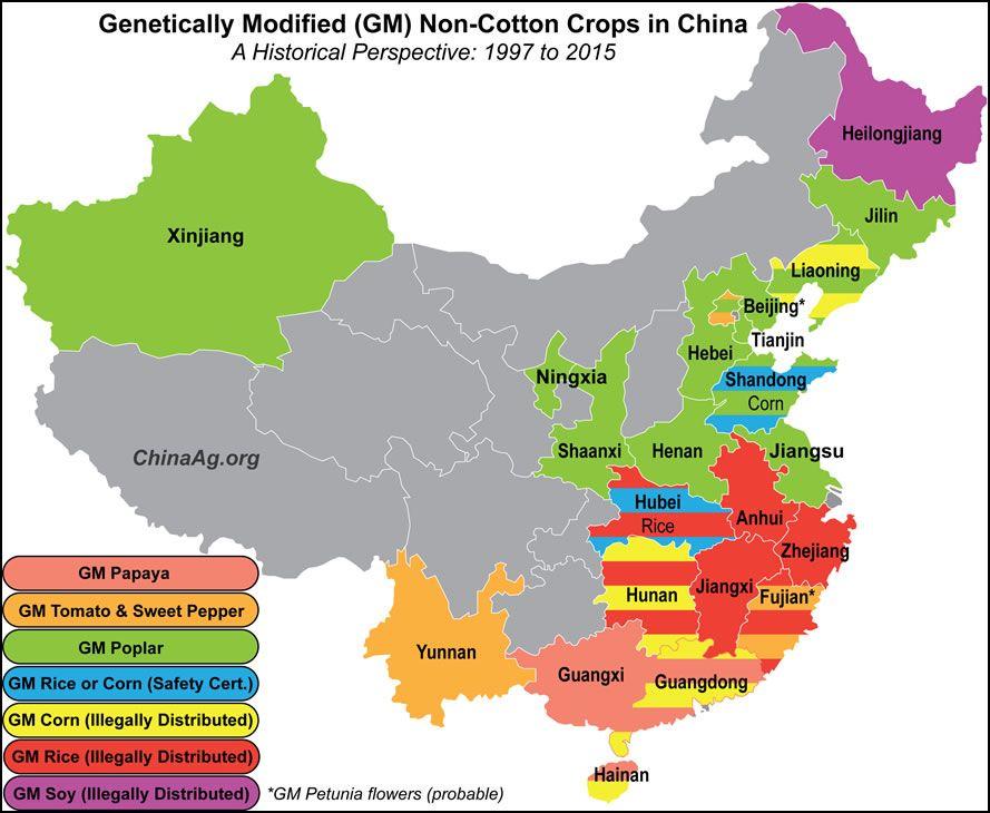 Mapa de distribución de los cultivos genéticamente modificados en China, sin contemplar el algodón. Fuente: ChinaAg.